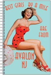 Vintage Avalon Girls Notebook from www.retrophilly.com