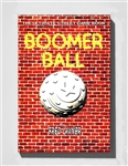 BOOMER BALL: The Ultimate Street Ball Book by Fred Lavner from www.retrophilly.com